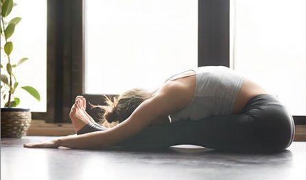 yoga for fibromyalgia and multiple sclerosis