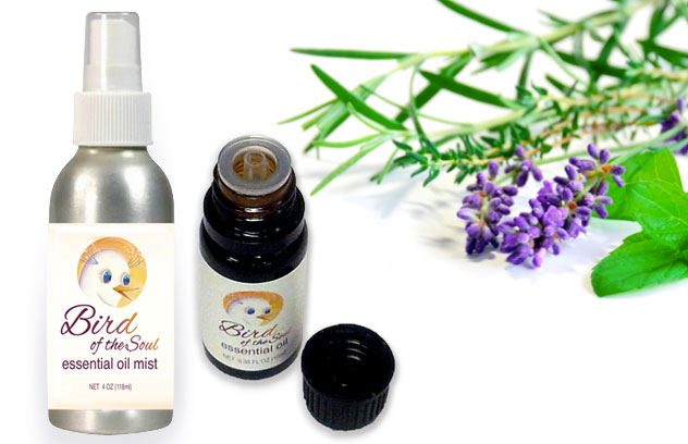 Ilchi Lee Bird of the Soul Essential Oil