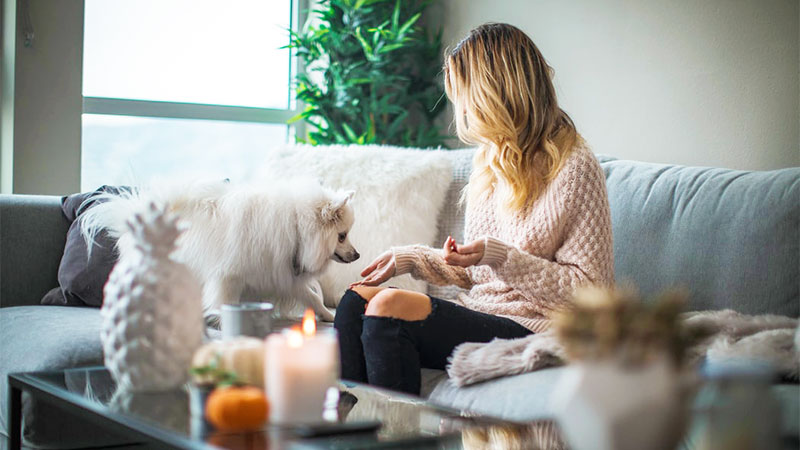 woman cozy in house with dogs